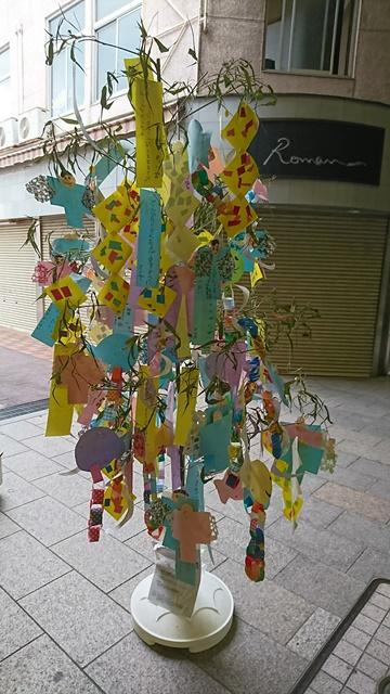 gifu_july_tanabata.jpg