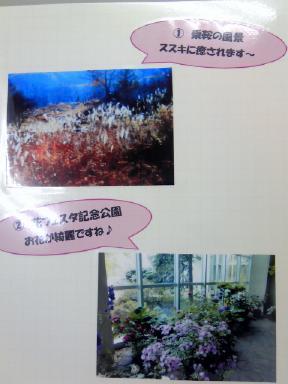 dejikame_gifu_3.jpg