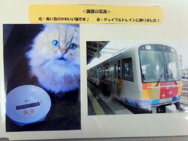 dejikame_gifu_5.jpg