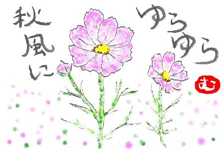 kosumosu_hirakata.jpg