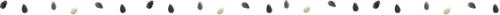 スイカの種.png
