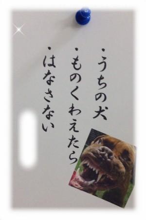 oyama_senryu_002.jpg