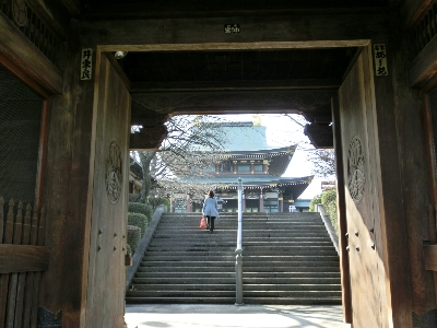 oyama_toukyoudaibutu_05.JPG