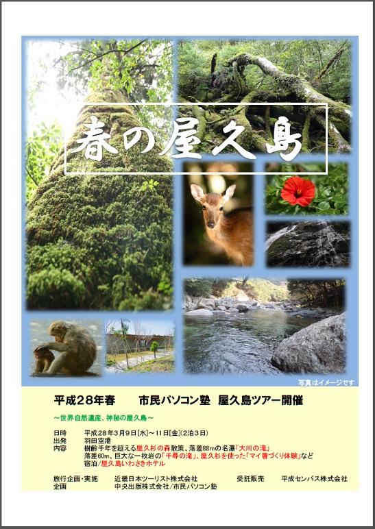oyama_yakusima_001.jpg