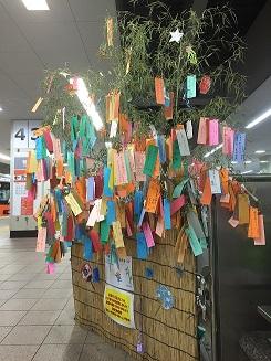 tanabata-oyama01.jpg