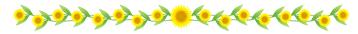 funabashi_20180728_sunflower.png